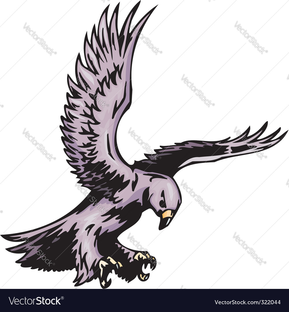 Predatory birds vector | Price: 1 Credit (USD $1)