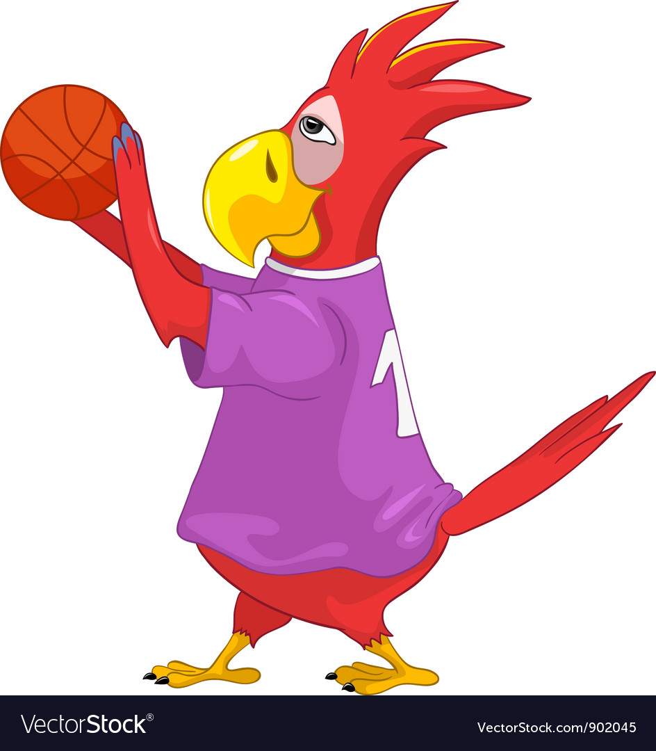 Funny parrot basketball vector | Price: 3 Credit (USD $3)