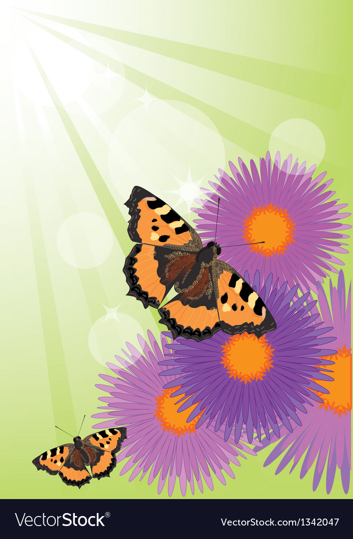 Summer background with flowers and butterflies vector | Price: 1 Credit (USD $1)