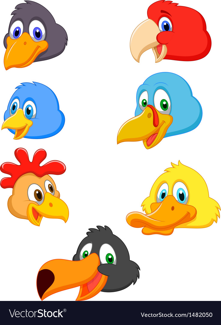 Bird head cartoon collection vector | Price: 1 Credit (USD $1)