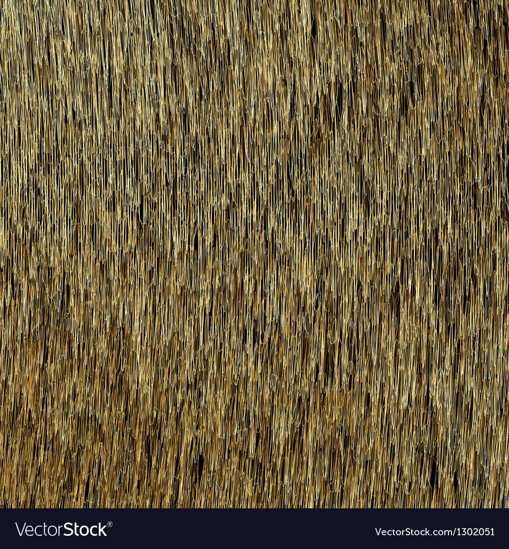 Abstract background golden threads scratched gold vector | Price: 1 Credit (USD $1)