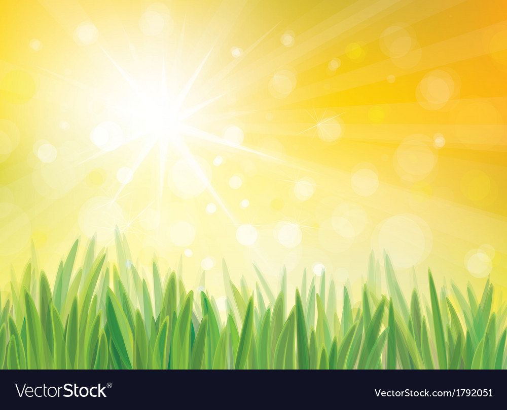 Sping sun grass vector | Price: 1 Credit (USD $1)