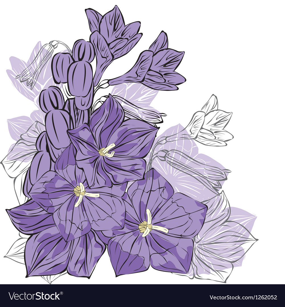 Spring flowers on a white background vector | Price: 1 Credit (USD $1)