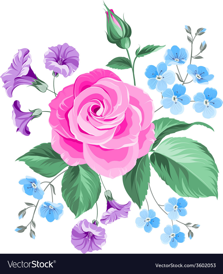 Hand drawn rose vector | Price: 1 Credit (USD $1)