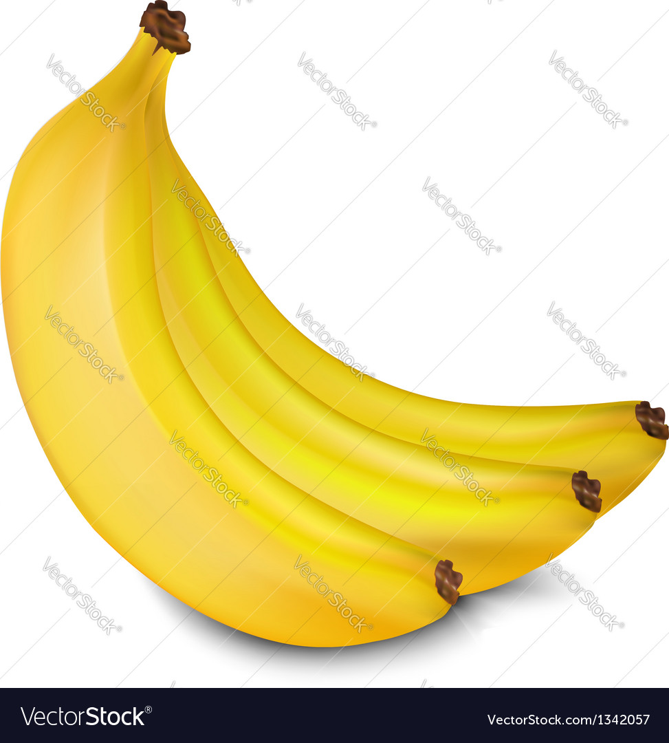 Bananas vector | Price: 1 Credit (USD $1)