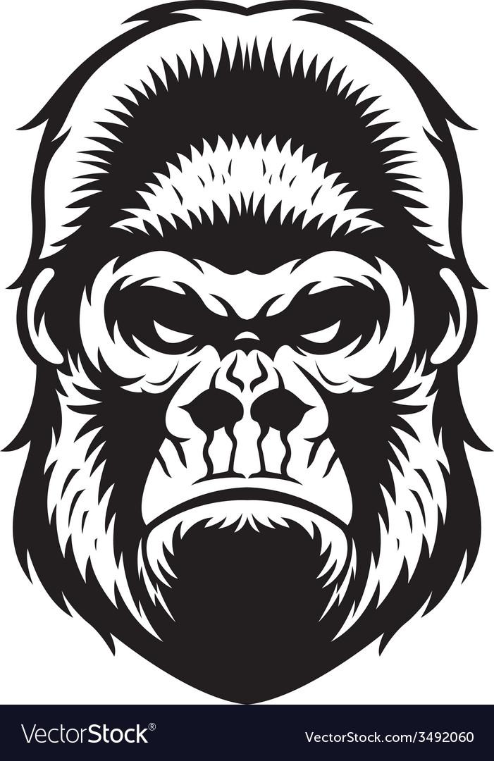 Gorilla head bw vector | Price: 1 Credit (USD $1)