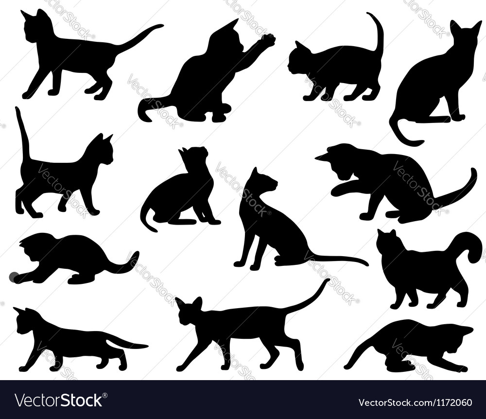 Silhouettes of cats vector | Price: 1 Credit (USD $1)