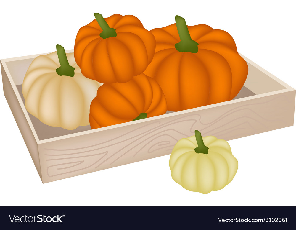 A pile of pumpkins in wooden box vector | Price: 1 Credit (USD $1)