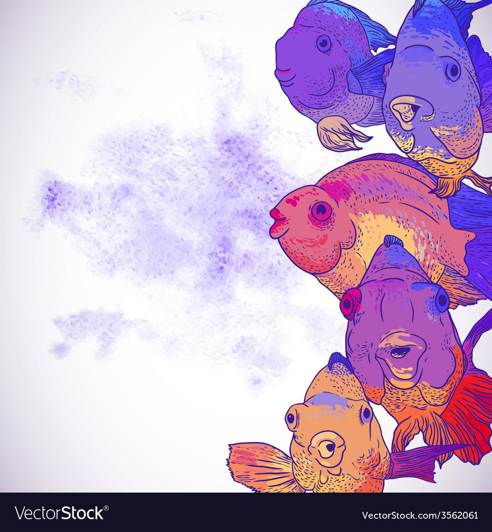 Colorful greeting card with fish vector | Price: 1 Credit (USD $1)