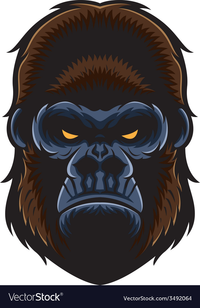 Gorilla head vector   Price: 3 Credit (USD $3)