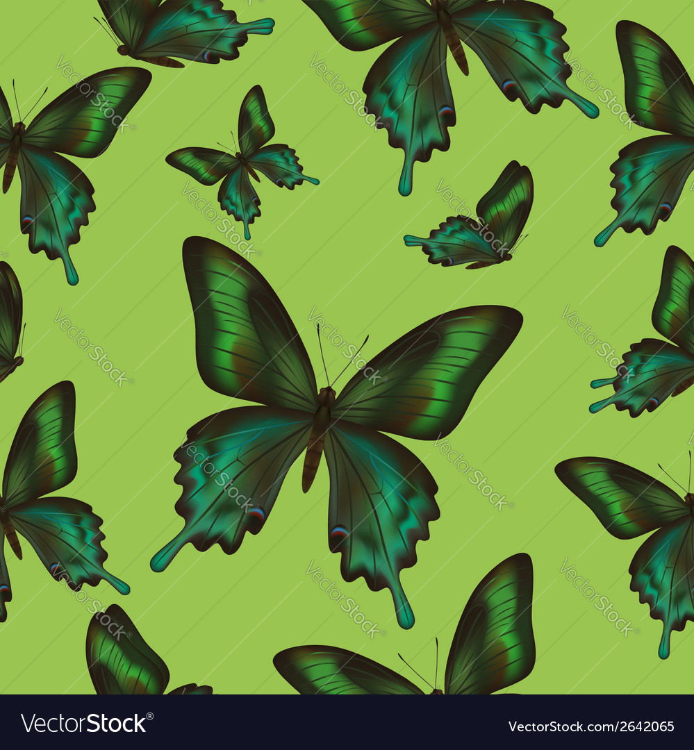 Seamless pattern with green butterfly vector | Price: 1 Credit (USD $1)