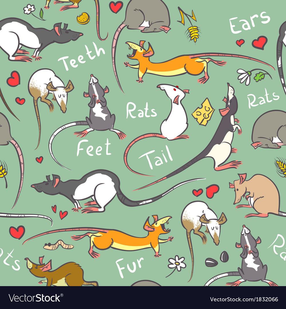 Cute rats vector | Price: 1 Credit (USD $1)