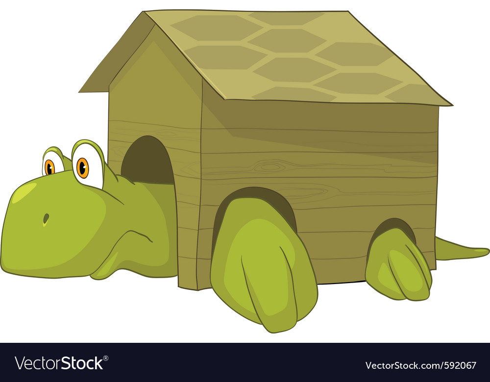 Cartoon character turtle vector | Price: 3 Credit (USD $3)