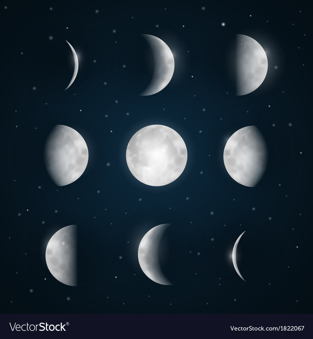 Moon phases  night sky with stars vector