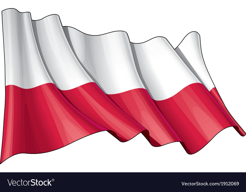 Poland national flag vector | Price: 1 Credit (USD $1)