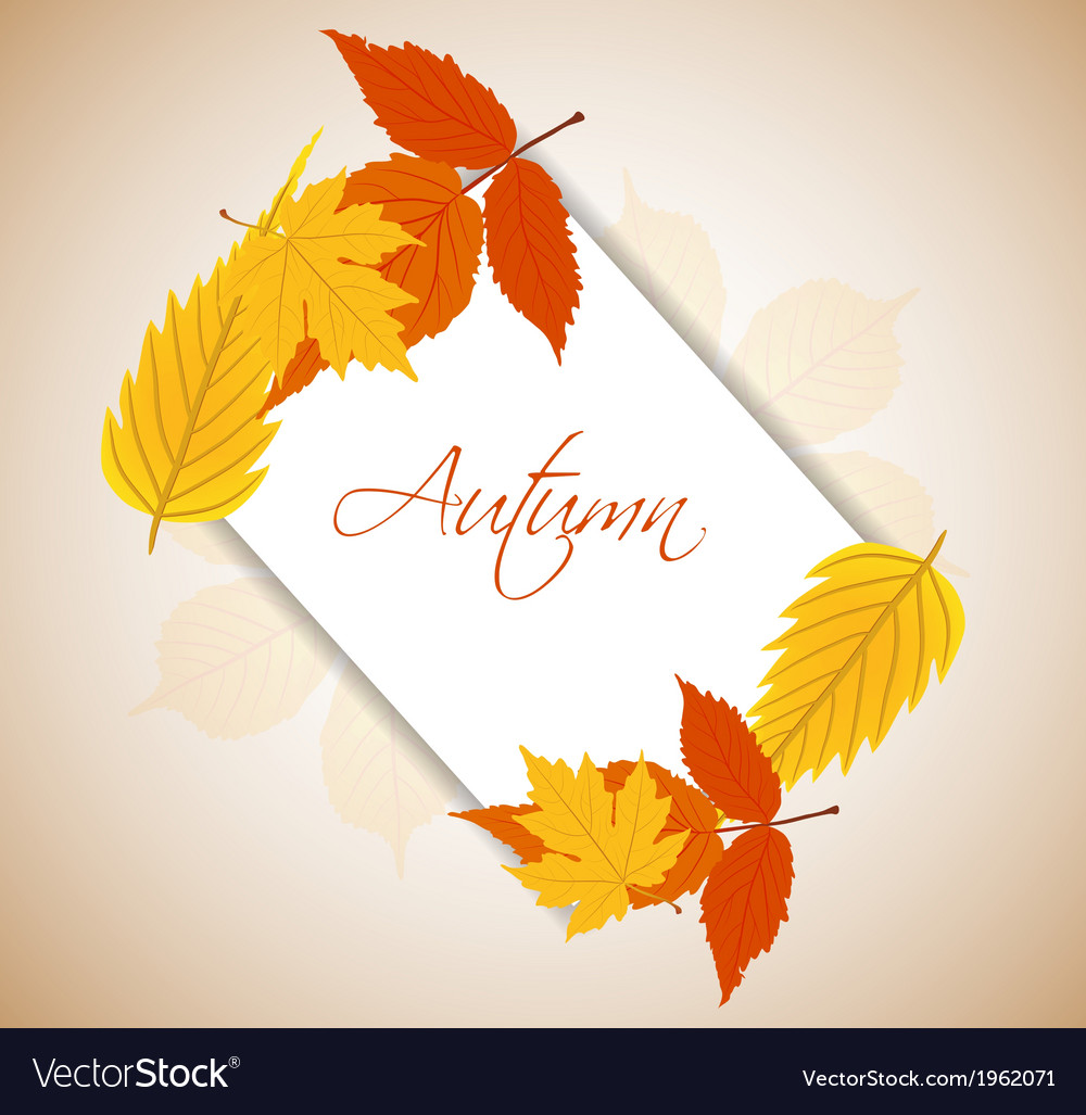 Autumn leaves background vector | Price: 1 Credit (USD $1)