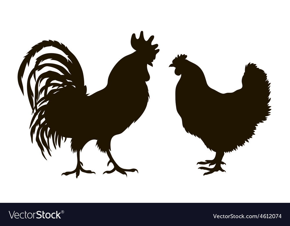 Silhouette of chickens vector | Price: 1 Credit (USD $1)