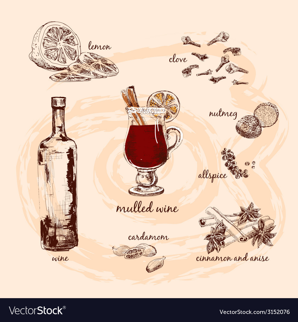 Mulled wine and its components vector   Price: 1 Credit (USD $1)