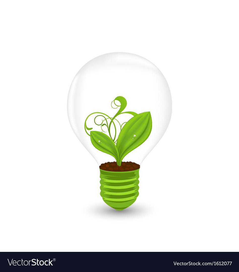 Bulb with green plant inside - eco technology vector | Price: 1 Credit (USD $1)
