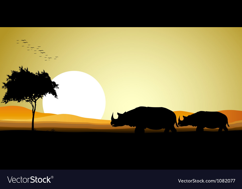 Couple rhino silhouette vector | Price: 1 Credit (USD $1)