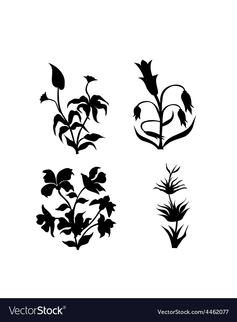 Flowers silhouette vector | Price: 1 Credit (USD $1)