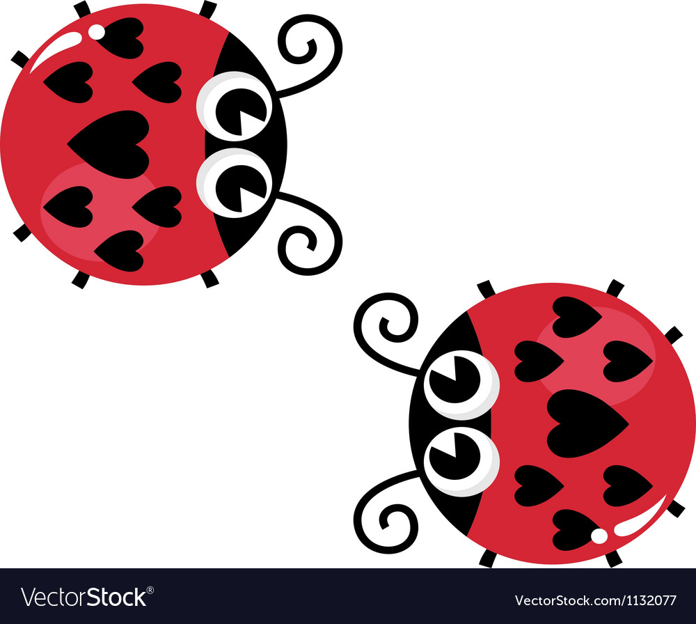 Valentines love lady bugs pair isolated on white vector | Price: 1 Credit (USD $1)