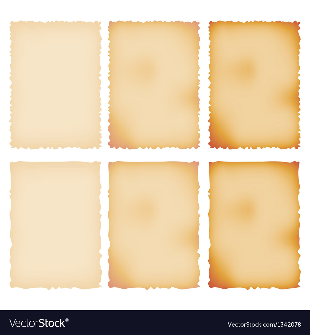 Burnt paper set torn border isolated on white vector | Price: 1 Credit (USD $1)