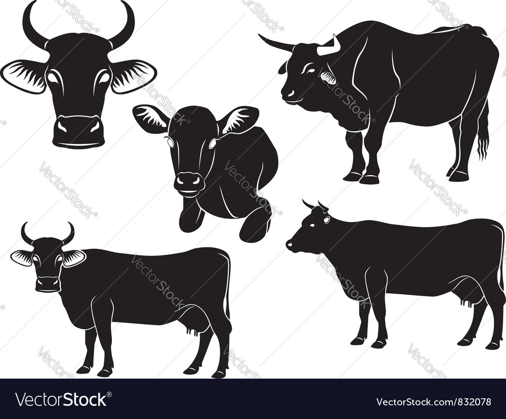 Cow bull and calf vector | Price: 1 Credit (USD $1)