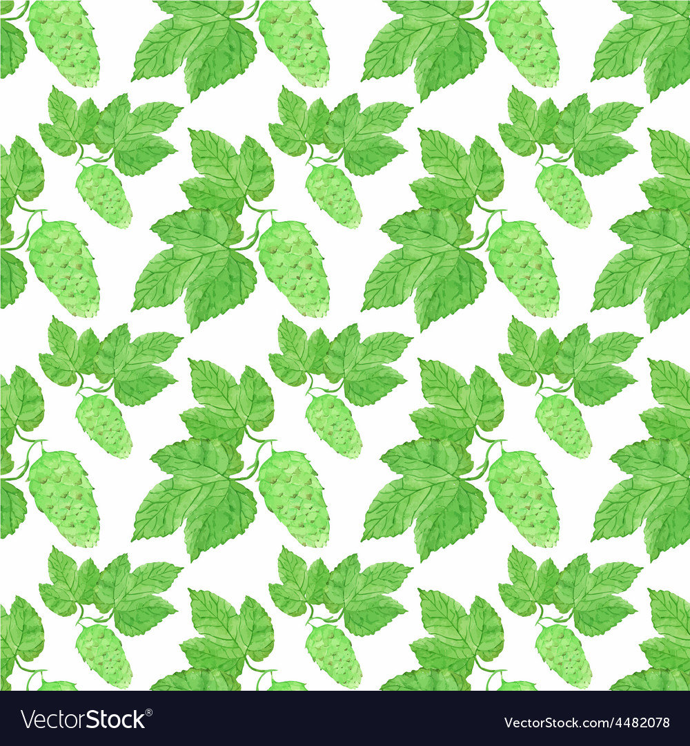 Watercolor seamless pattern with hops on the white vector | Price: 1 Credit (USD $1)