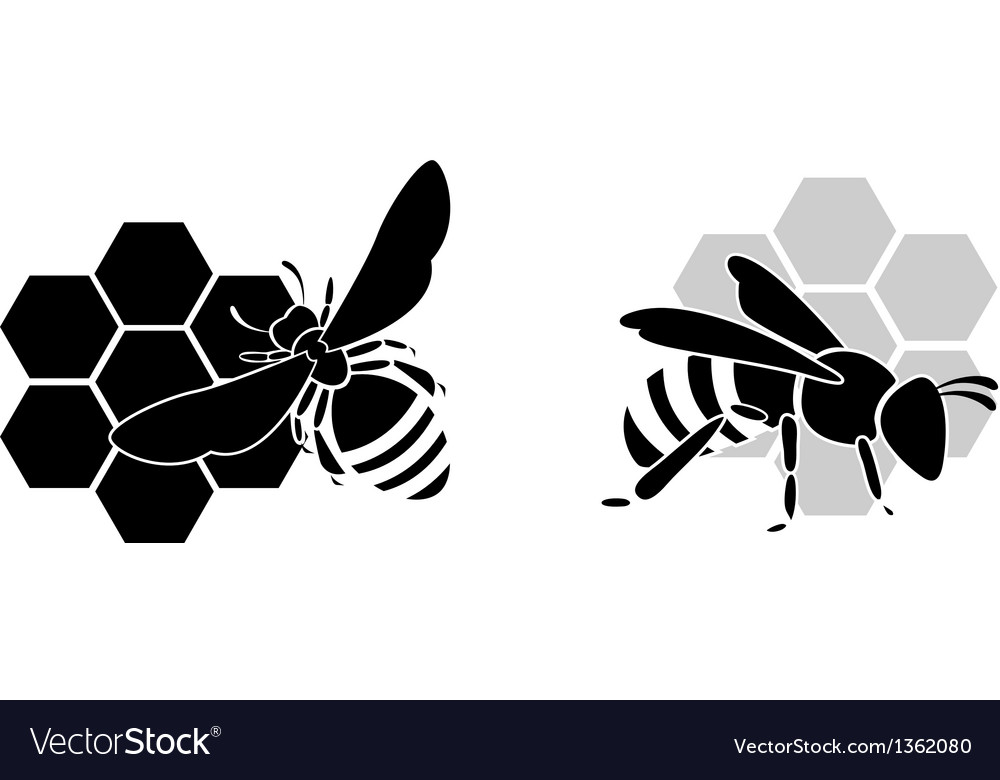 Black bee silhouette isolated on white background vector | Price: 1 Credit (USD $1)