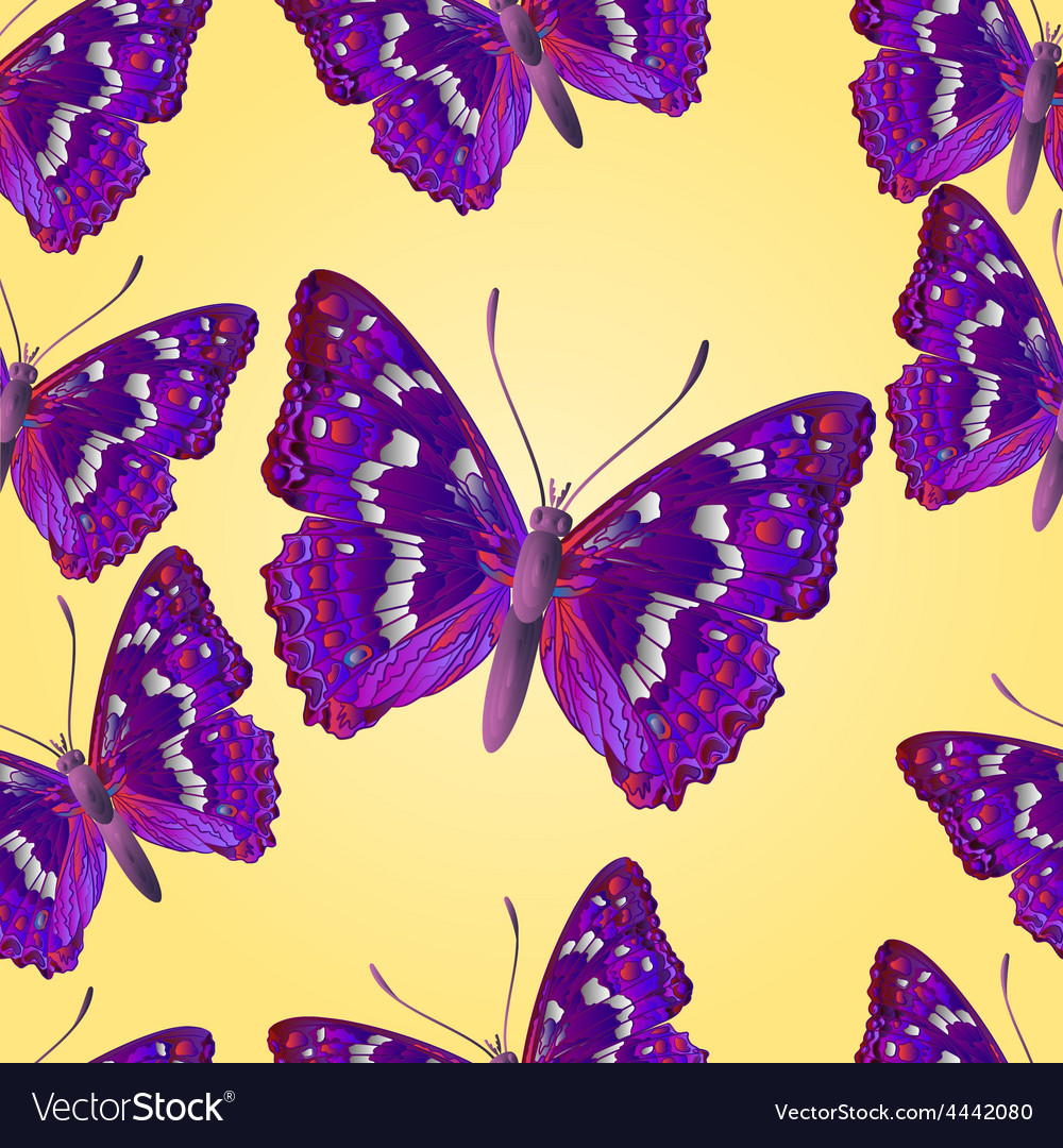 Seamless texture butterfly apatura iris vector | Price: 1 Credit (USD $1)