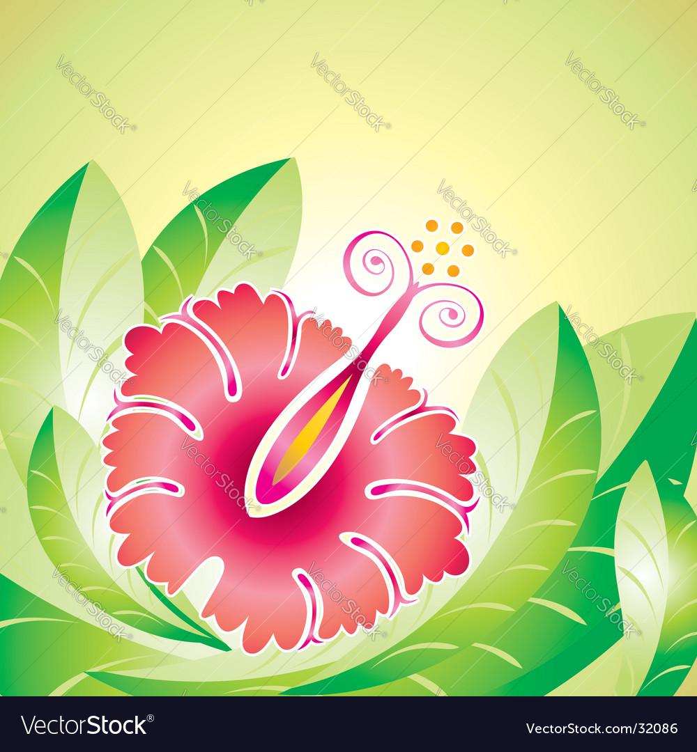 Hibiscus flower vector | Price: 1 Credit (USD $1)