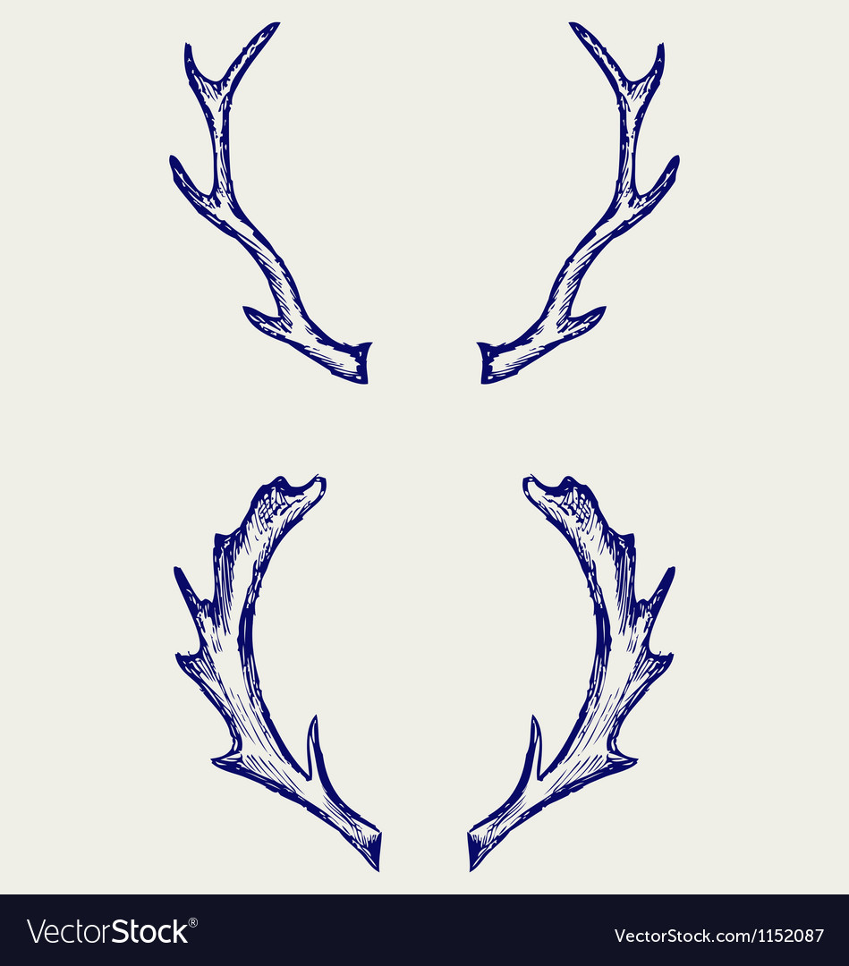 Deer horns vector | Price: 1 Credit (USD $1)