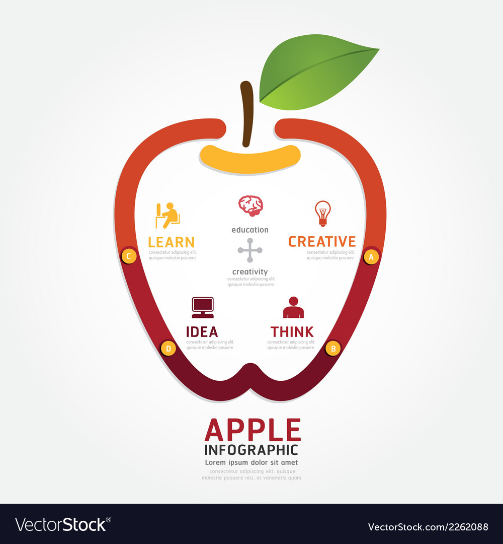 Apple brain design diagram line style infographics vector | Price: 1 Credit (USD $1)