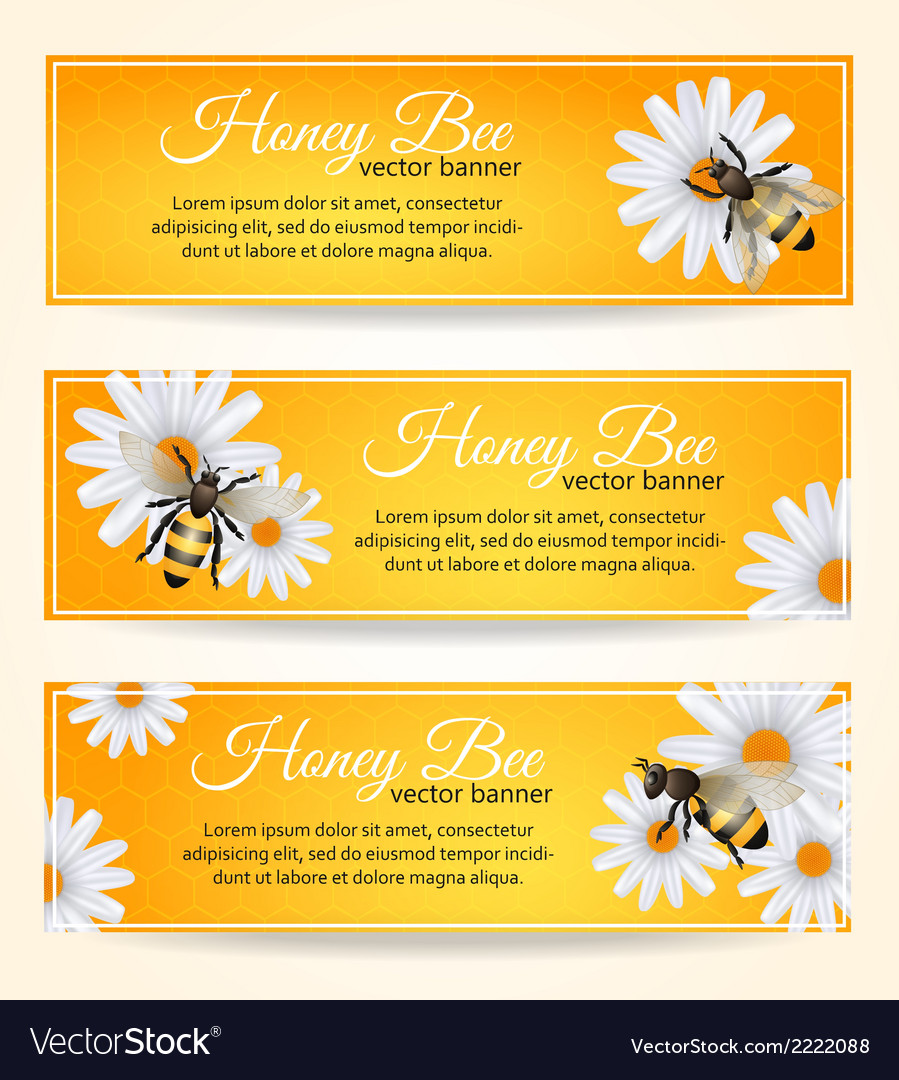 Bee banners set vector | Price: 1 Credit (USD $1)