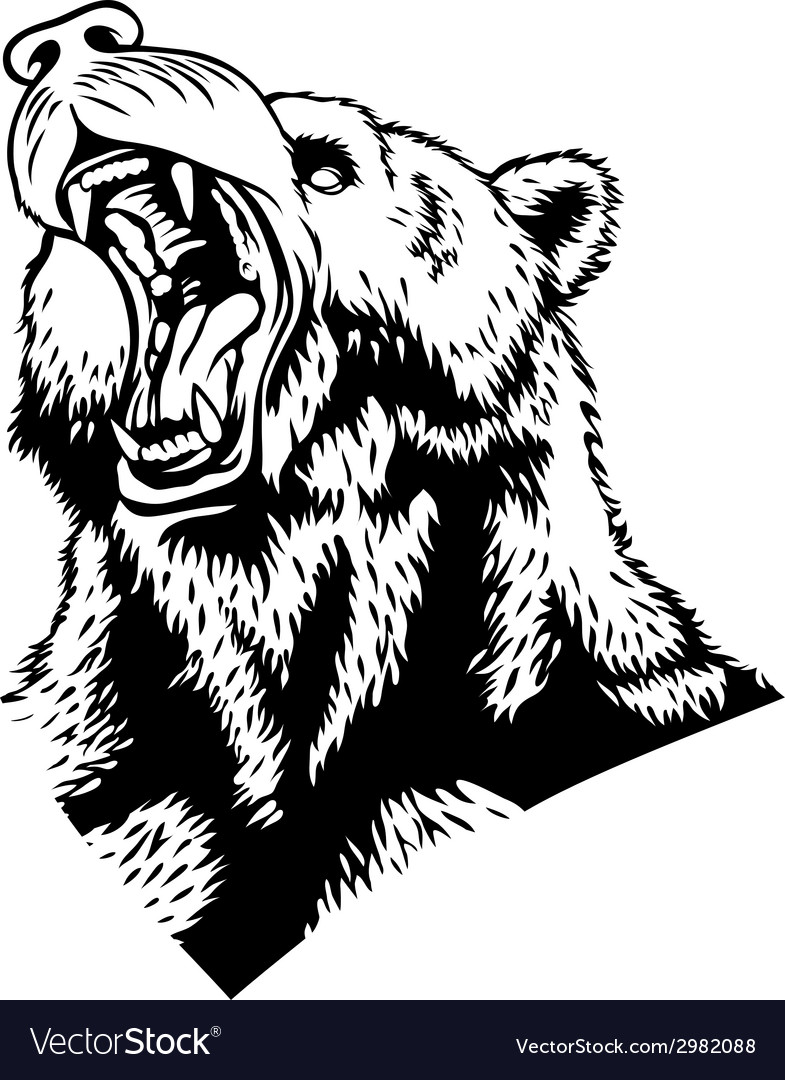 Head of the bear vector | Price: 1 Credit (USD $1)