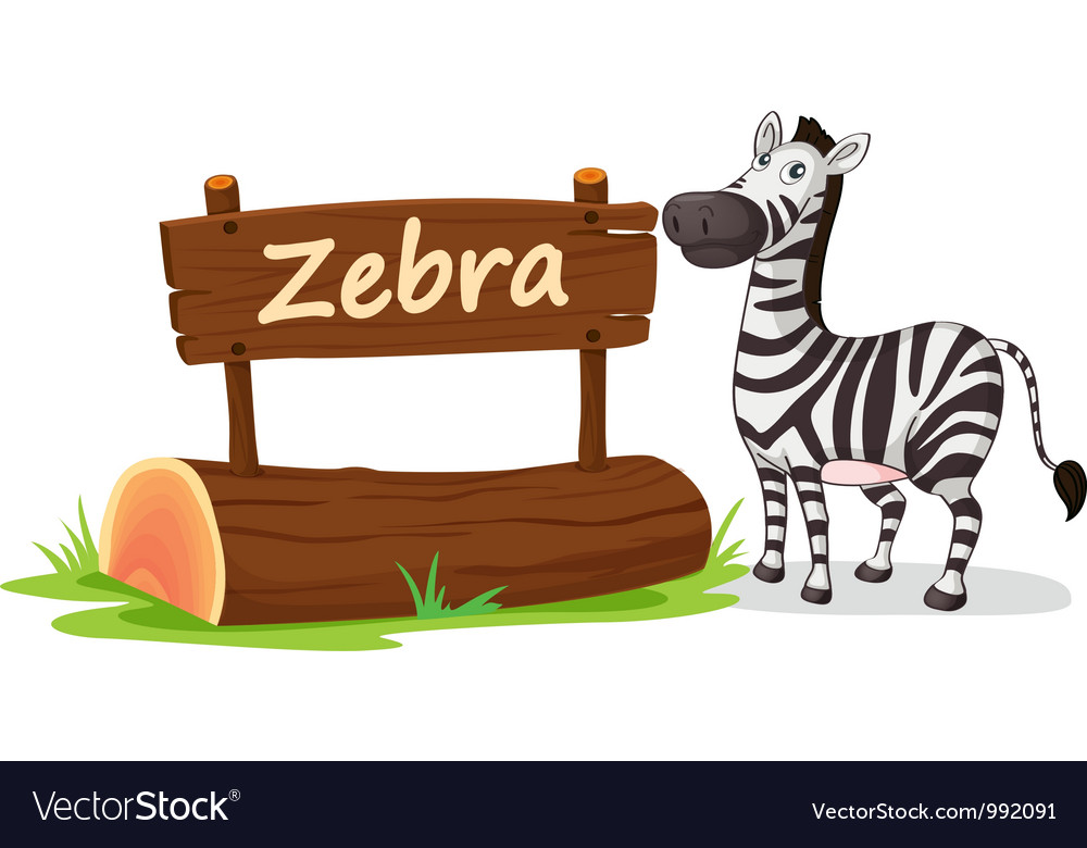 Zebra zoo sign vector | Price: 1 Credit (USD $1)