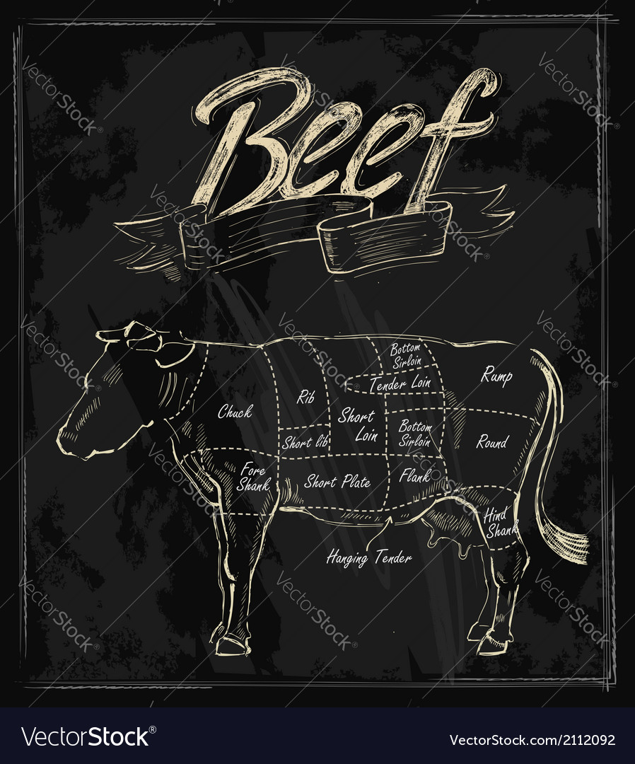 Hand drawn beef vector | Price: 1 Credit (USD $1)