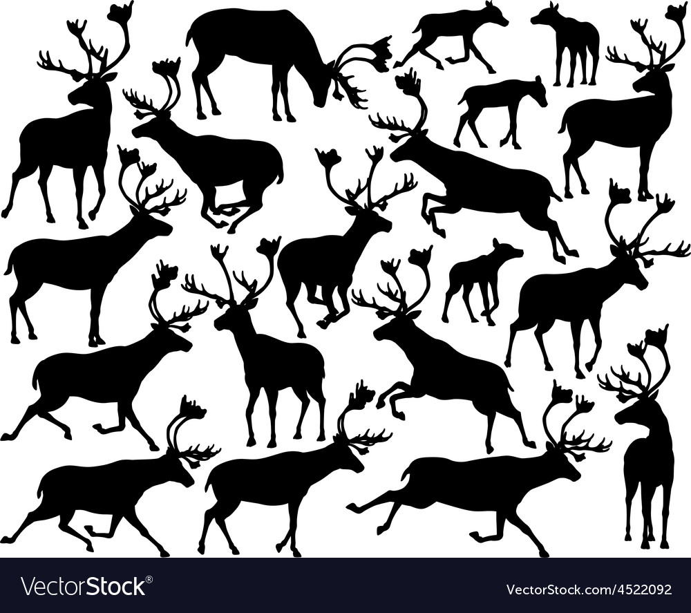 Reindeer or caribou silhouettes vector | Price: 1 Credit (USD $1)
