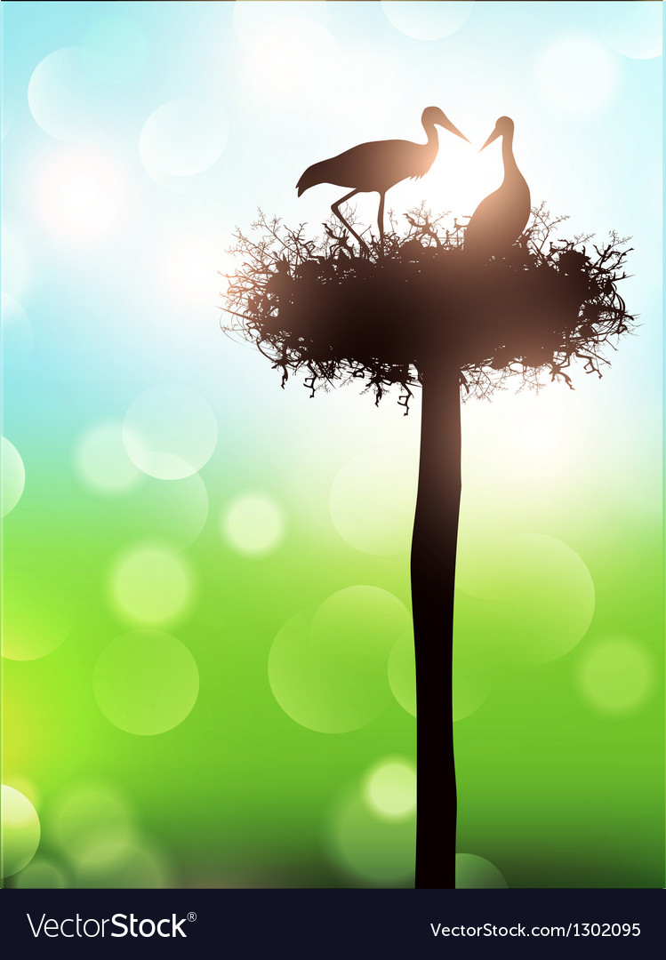Stork nest vector | Price: 1 Credit (USD $1)