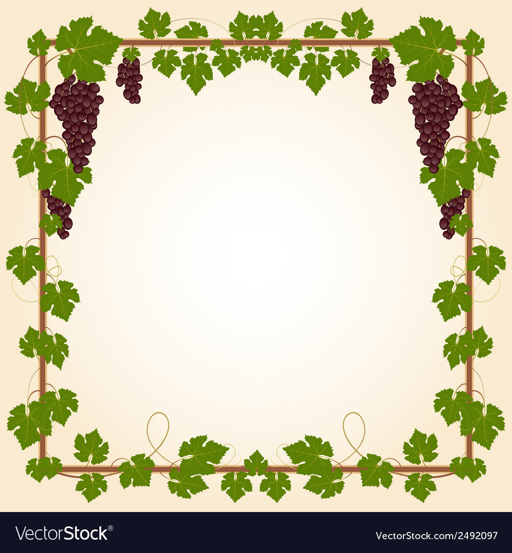 Grape square frame vector | Price: 1 Credit (USD $1)