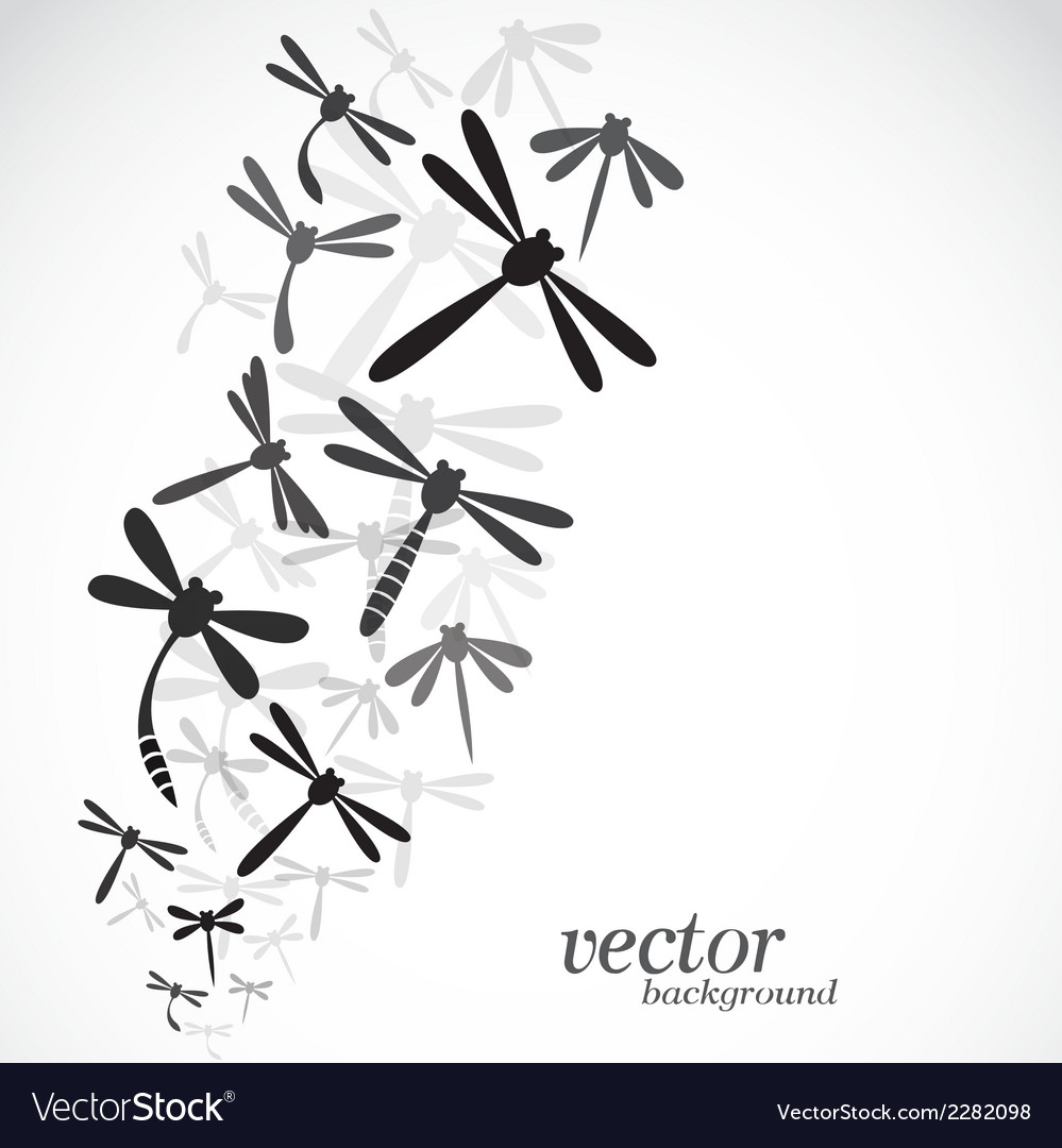 Dragonfly design vector