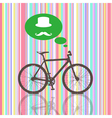 Colorful vintage bicycle vector