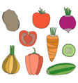 Set of hand drawn vegetables vector