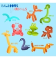 Balloon animals isolated vector