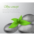 Spa stone with leaves vector