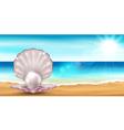 Shell beach vector