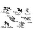 Black horse stallions mascots vector
