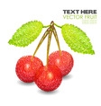 Three abstract cherry with leaf isolated on white vector