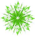 Spring flower star vector